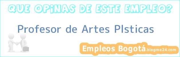 Profesor de Artes Plsticas