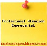 Profesional Atención Empresarial