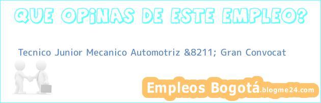 Tecnico Junior Mecanico Automotriz &8211; Gran Convocat