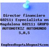 Director financiero &8211; Especialista en Magdalena &8211; GRUPO AUTOMOTRIZ AUTOMUNDO S.A.S