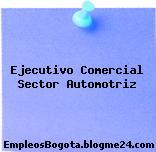 Ejecutivo Comercial Sector Automotriz