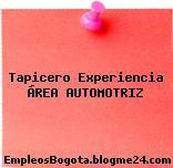 Tapicero Experiencia ÁREA AUTOMOTRIZ