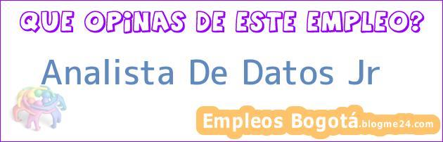 Analista De Datos Jr