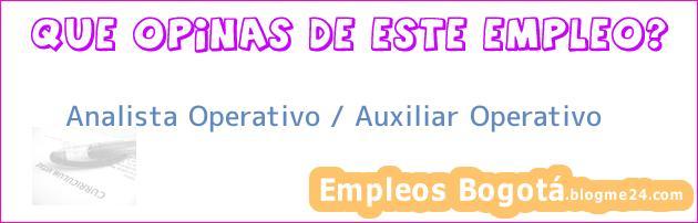 Analista Operativo / Auxiliar Operativo
