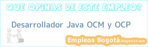 Desarrollador Java OCM y OCP