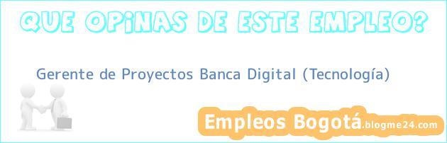 Gerente de Proyectos Banca Digital (Tecnología)