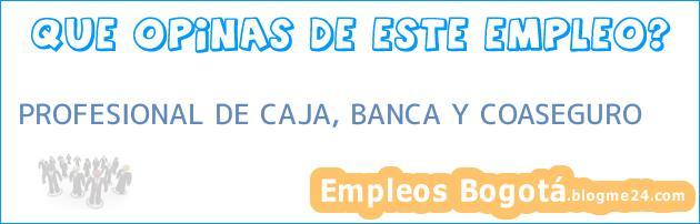 PROFESIONAL DE CAJA, BANCA Y COASEGURO
