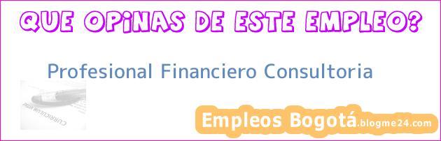 Profesional Financiero Consultoria