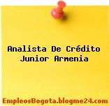 Analista De Crédito Junior Armenia