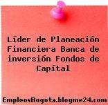 Líder de Planeación Financiera Banca de inversión Fondos de Capítal