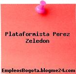 Plataformista Perez Zeledon
