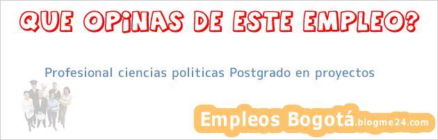Profesional ciencias politicas Postgrado en proyectos