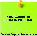 PRACTICANTE EN CIENCIAS POLITICAS