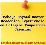 Trabajo Bogotá Rector Academico Experiencia en Colegios Campestres Ciencias