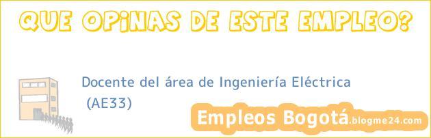 Docente del área de Ingeniería Eléctrica   (AE33)