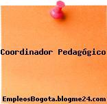 Coordinador Pedagógico