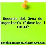 Docente del área de Ingeniería Eléctrica | (AE33)