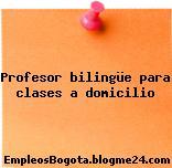 Profesor bilingüe para clases a domicilio