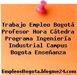 Trabajo Empleo Bogotá Profesor Hora Cátedra Programa Ingeniería Industrial Campus Bogota Enseñanza