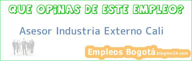 Asesor Industria Externo Cali