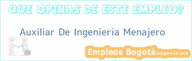 Auxiliar De Ingenieria Menajero