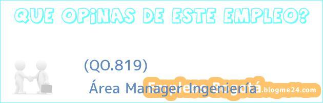 (QO.819) | Área Manager Ingeniería