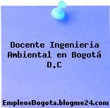 Docente Ingenieria Ambiental en Bogotá D.C