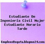Estudiante De Ingeniería Civil Mujer Estudiante Horario Tarde