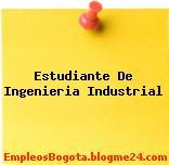 Estudiante De Ingenieria Industrial
