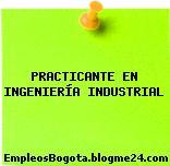 Practicante en Ingeniería Industrial