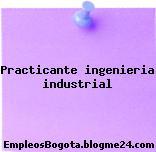 Practicante ingenieria industrial