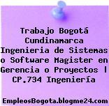 Trabajo Bogotá Cundinamarca Ingenieria de Sistemas o Software Magister en Gerencia o Proyectos | CP.734 Ingeniería