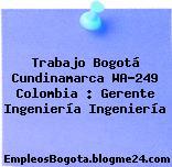 Trabajo Bogotá Cundinamarca WA-249 Colombia : Gerente Ingeniería Ingeniería