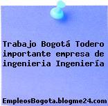 Trabajo Bogotá Todero importante empresa de ingenieria Ingeniería