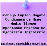 Trabajo Empleo Bogotá Cundinamarca Hseq Medio Tiempo Importante Empresa De Ingeniería Ingeniería