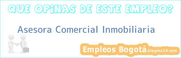 Asesora Comercial / Inmobiliaria