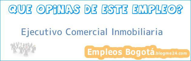 Ejecutivo Comercial Inmobiliaria