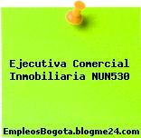 Ejecutiva Comercial Inmobiliaria NUN530