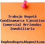Trabajo Bogotá Cundinamarca Ejecutivo Comercial Arriendos Inmobiliaria