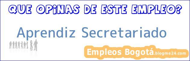 Aprendiz Secretariado