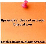 Aprendiz Secretariado Ejecutivo