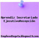 Aprendiz Secretariado Ejecutivo/Recepción