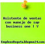 Asistente de ventas con manejo de sap business one | V