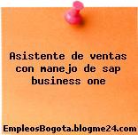 Asistente de ventas con manejo de sap business one