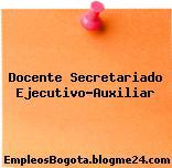 Docente Secretariado Ejecutivo-Auxiliar