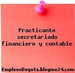 Practicante secretariado financiero y contable