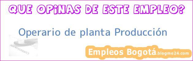 Operario de planta Producción