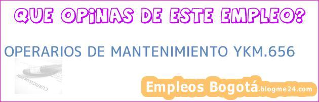 OPERARIOS DE MANTENIMIENTO YKM.656