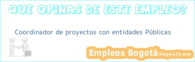 Coordinador de proyectos con entidades Públicas