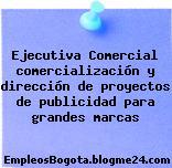 Ejecutiva Comercial comercialización y dirección de proyectos de publicidad para grandes marcas